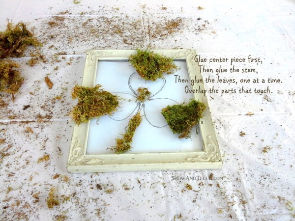 Use the glass and frame only from a vintage frame to make a framed moss shamrock or any moss shape that works for you. Rustic, simple look for St Patrick's Day or Spring decor - StowandTellU.com