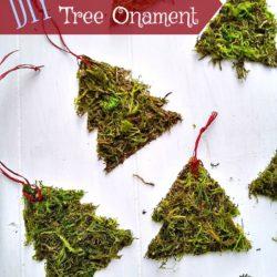 DIY Moss Christmas Tree Ornament | StownadTellU