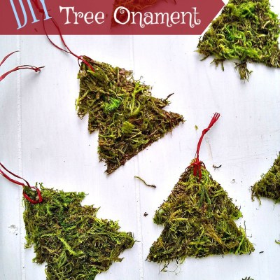 DIY Moss Christmas Tree Ornaments