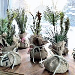 Mini faux seedlings from upcycled Christmas pine tree decor | StowandTellU.com