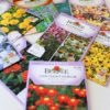 Start with a Seed Series part3: buying seeds, understanding seed packets | stowandtellu.com