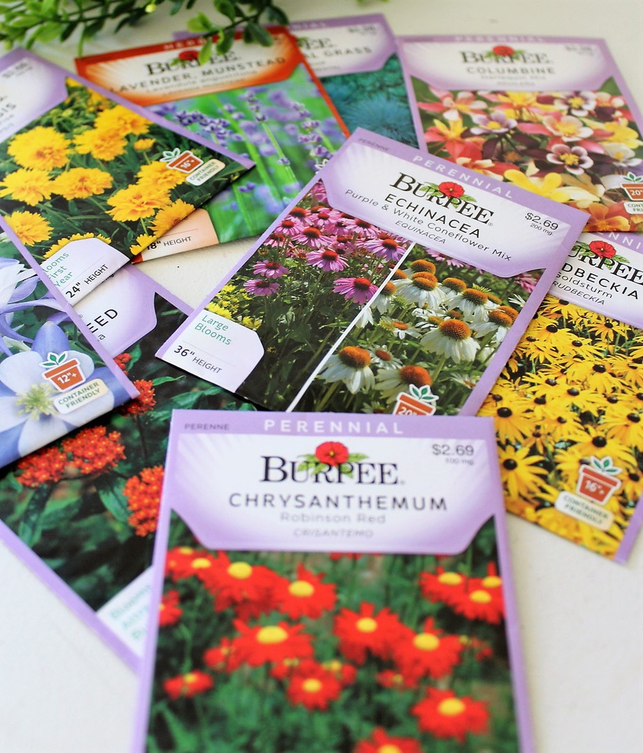 Start with a Seed Series (part 3): Buying Seeds and Understanding Seed Packets
