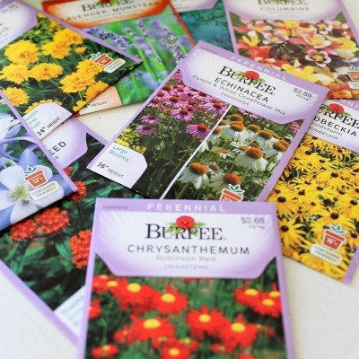 Buying Seeds and Understanding Seed Packets (Start with a Seed Series – part 3)