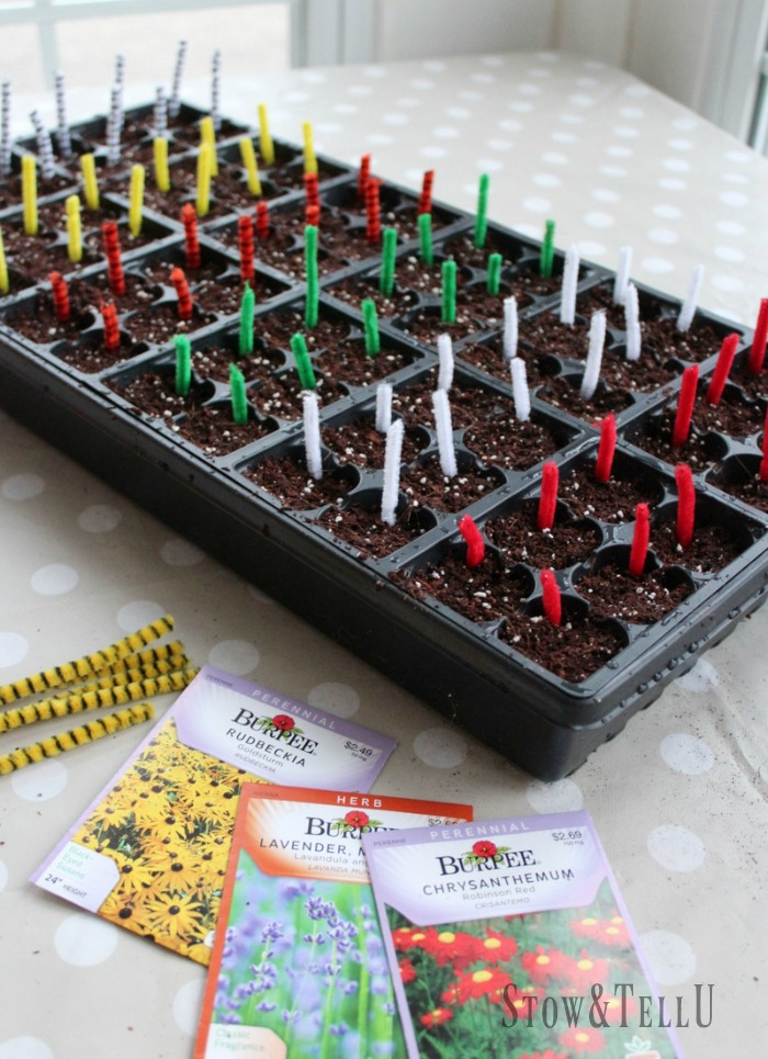 Easy Pipe Cleaner Plant Markers