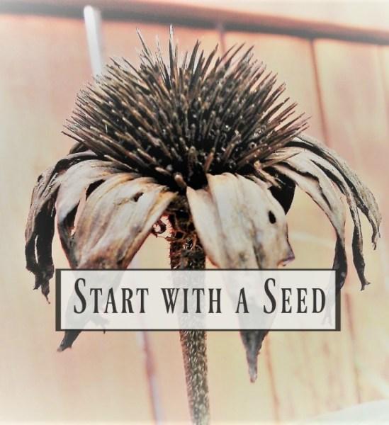 start-with-a-seed-growing-series-2-garden-planning | stowandtellu.com