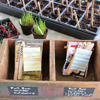 Start with a Seed (part 4): Organizing a Seed Planting Project