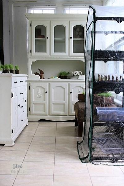 Unconventional-sun-porch-design | stowandtellu