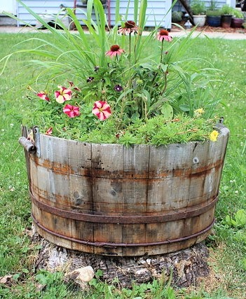 Benefits of container gardening with flowers and herbs as accent plants | stowandtellu.com