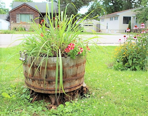 Herb and flower bination container gardening ideas