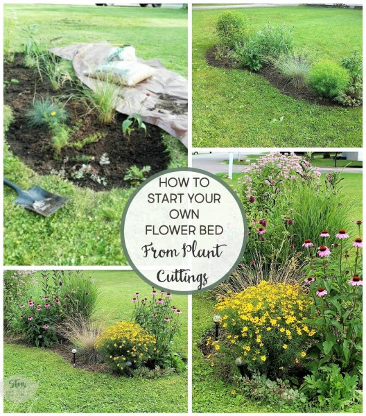 6 Tips for starting a diy flower bed | diy flower bed makeover using plant cuttings | stowandtellu.com