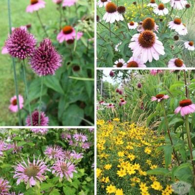 How to start a diy flower bed | flower garden makeover | stowandtellu.com