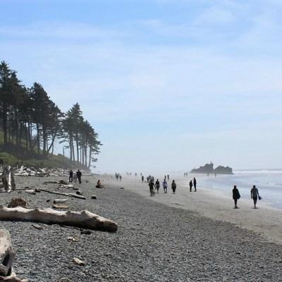 Greetings from the Washington Coast