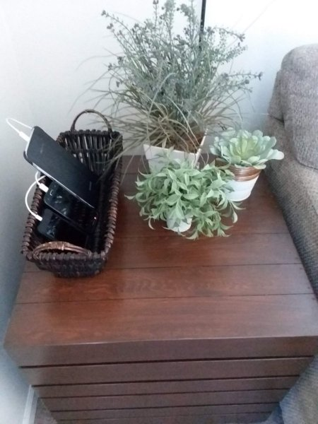 Basket Phone Charging Station and Plants on Table Top