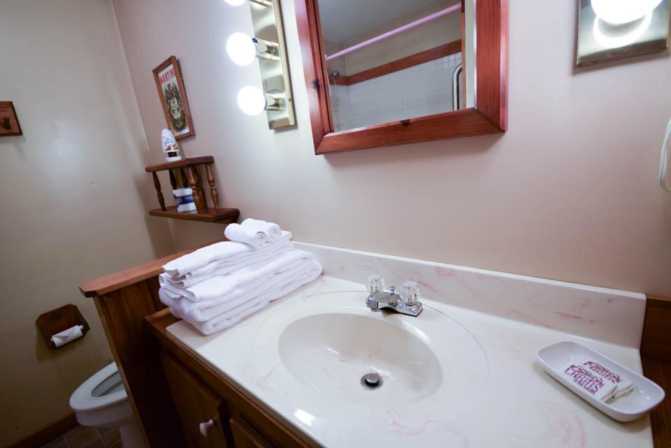 Birch cabin bathroom