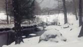 The Miller Brook