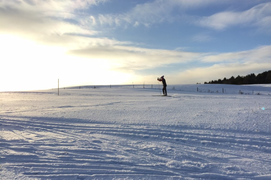 Skiing on Mayo Farm Trail.