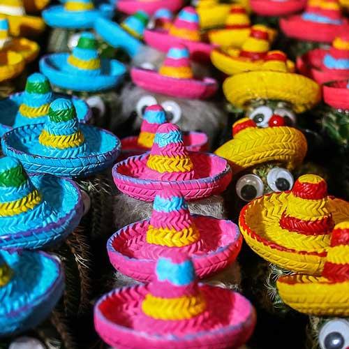 toy event for cinco de mayo