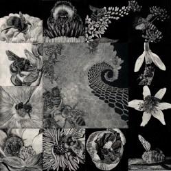 Page 4-Chelonidae Artistry-Vanishing