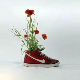 shoes_Baze_plant_ok_instagram