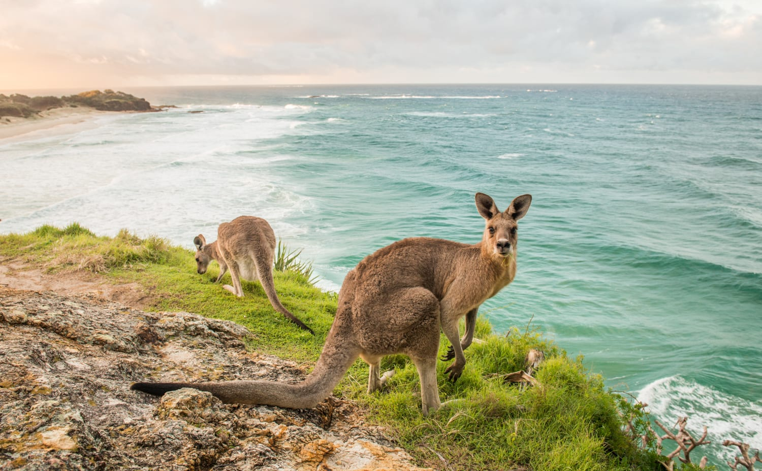 Connecting You To North Stradbroke Island: Official North Stradbroke Island Website