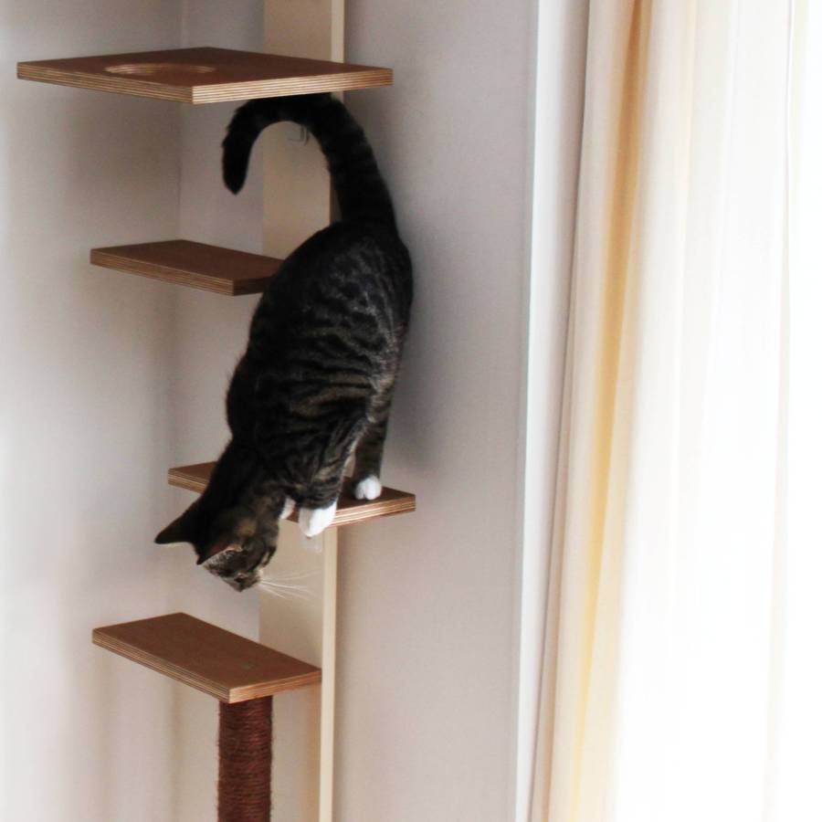 Kattenpaal - STRAEL Productontwerp en Meubelmaker Utrecht