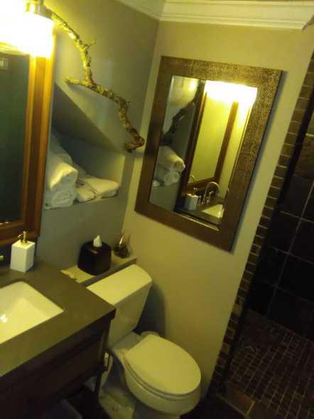 Slate Bathroom Remodel 29