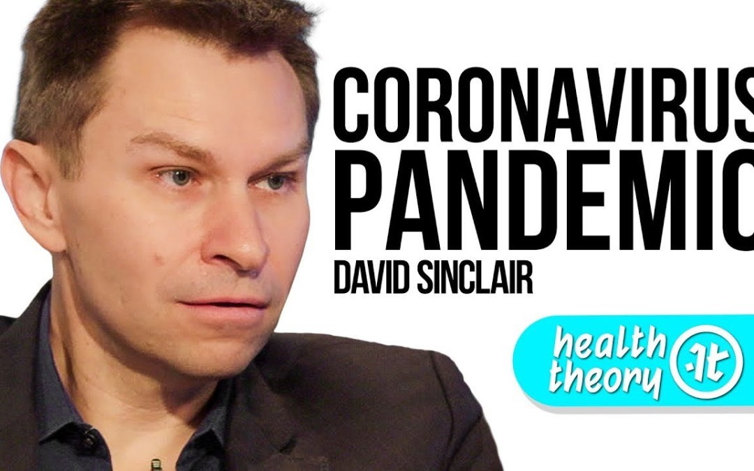Everything You Need to Know About The Coronavirus Pandemic (David Sinclair on Health Theory)