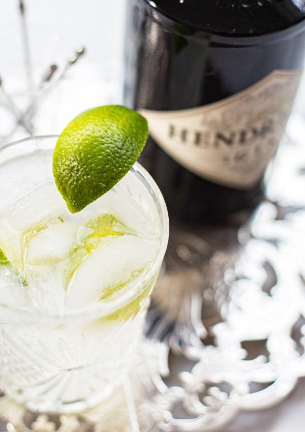 A Study in Gin; Gin & Tonics