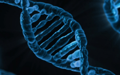 Cannabis and DNA: How Your Experience Is Linked to Genetics