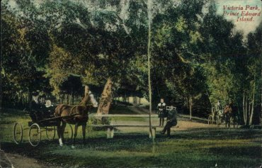 Victoria Park was a popular spot for carriage rides until the age of the automobile. Taylor's Book Store postcard.