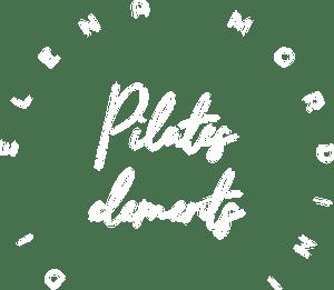 Pilates Elements logo bianco sfondo trasparente