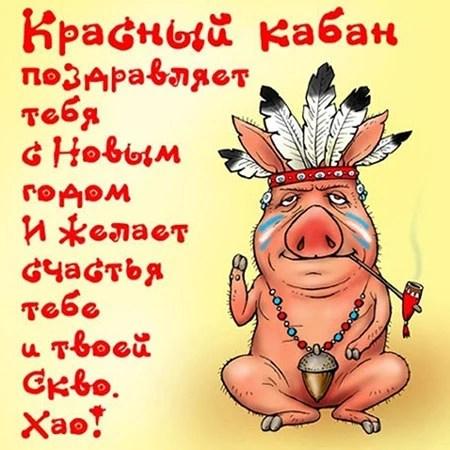 Смешное поздравление с наступающим новым годом свиньи