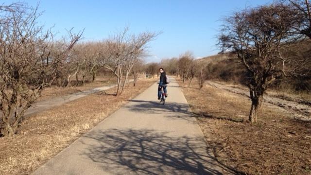 Fahrradweg Scheveningen