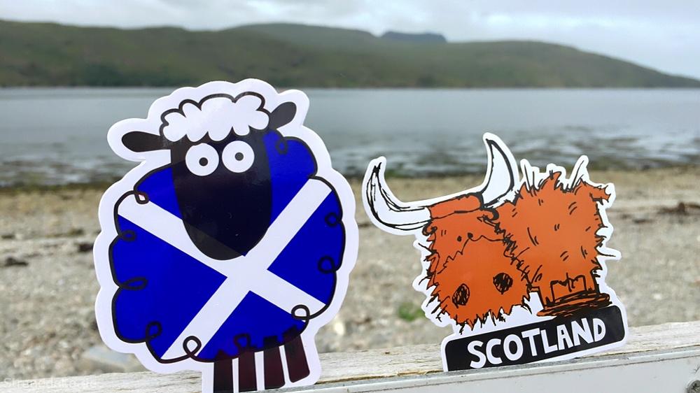 aufkleber1 - Schottland Schaf versus Highland Harry