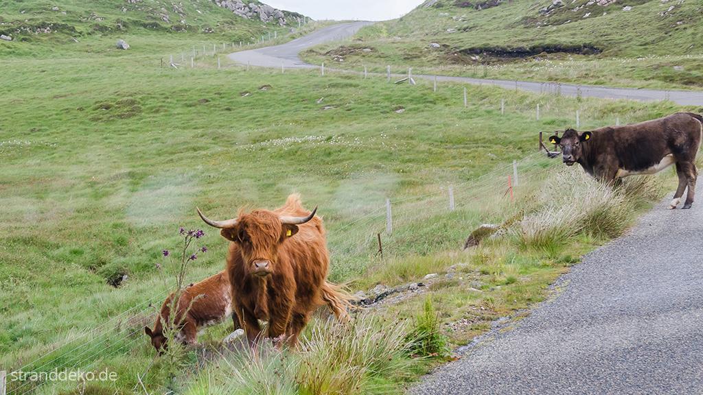 20160703 01 - Schottland II - Äußere Hebriden - Harris and Lewis
