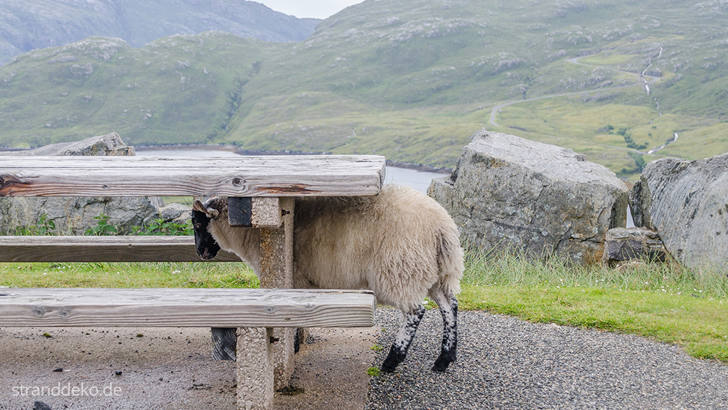 20160703 05 - Schottland II - Äußere Hebriden - Harris and Lewis
