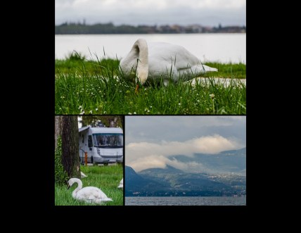 Italien2013 Seite 41 - Italien Fotobuch 2013