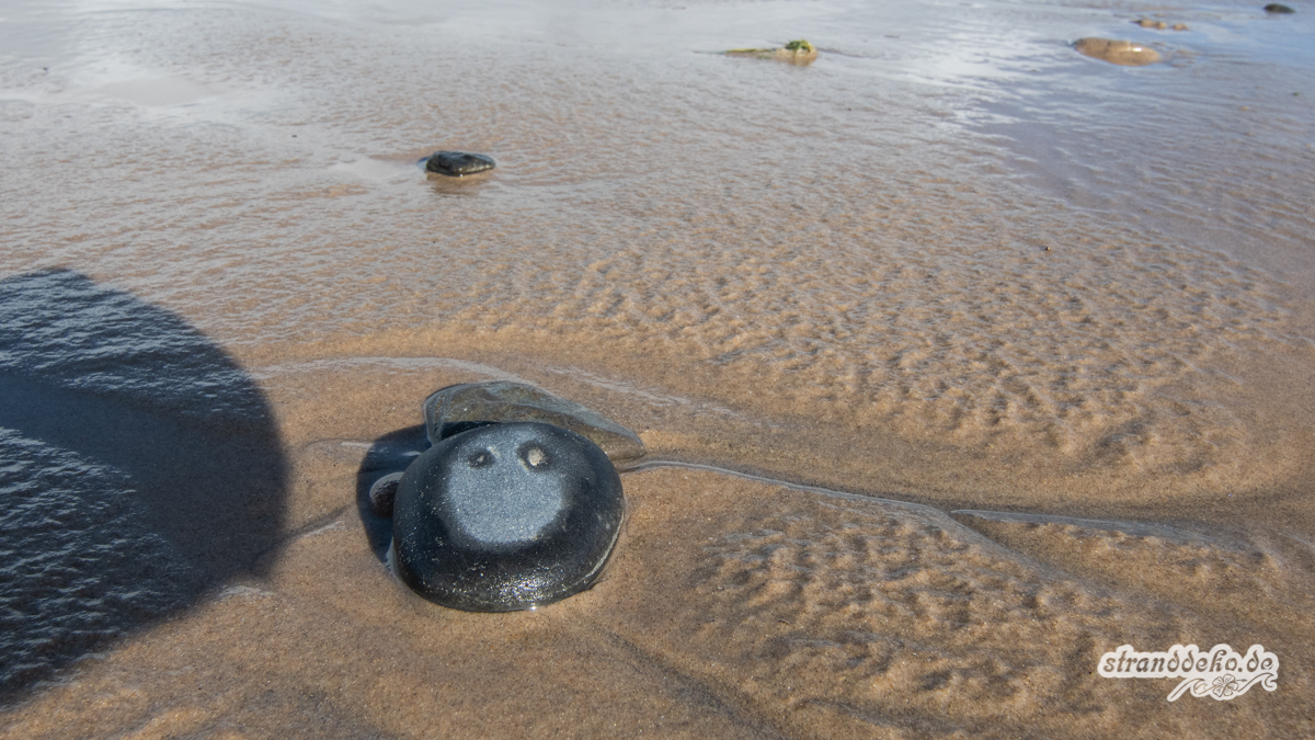 Schottland II 423 - Schottland - III - auf Strandsuche - Dunnet Beach, Thurso, Tongue