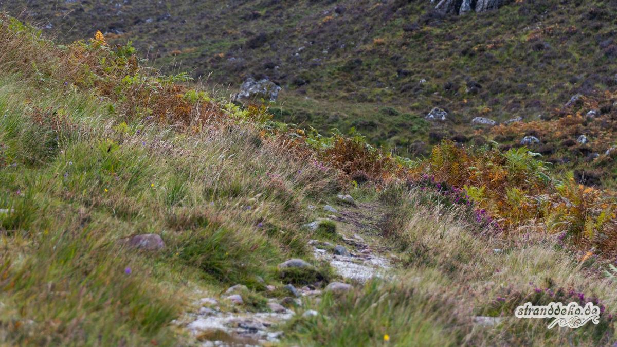 Schottland V 1091 - Schottland - V- Wandertage in Wester Ross