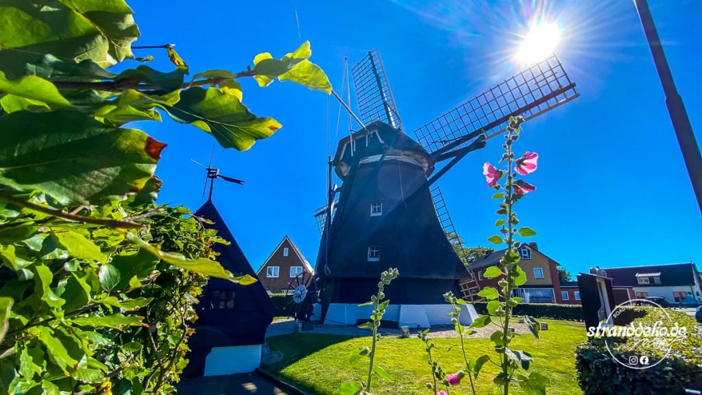 200731 Ijsselmeer 039 1024x576 - Mit dem Wohnmobil rund ums Ijsselmeer