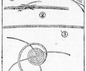 Instructions For Basket Making With Grasses From 1916