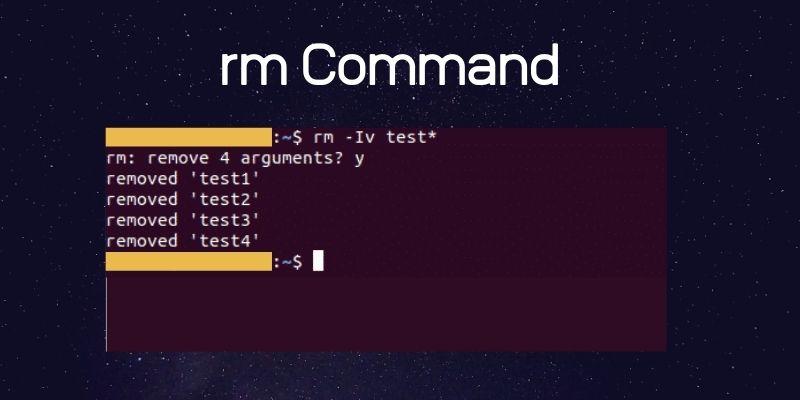 rm command