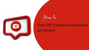 youtube nitifications