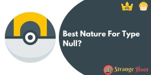 Best Nature For Type Null_