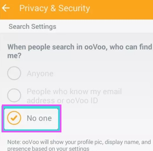 select No one from privacy and security