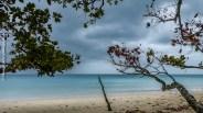 Beauvallon beach, Mahé Island
