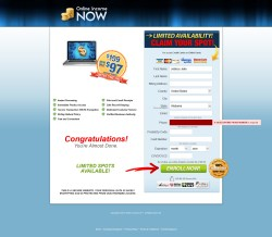 secure.onlineincnow.com Data Entry Screen