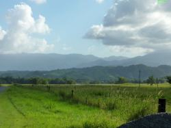 More Views - from near Cpt Cook Hwy. Banana and Cane fields just out of sight.