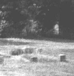 Η θεωρούμενη ως θέαση φαντάσματος στο Κοιμητήριο του Μπόρλεϊ