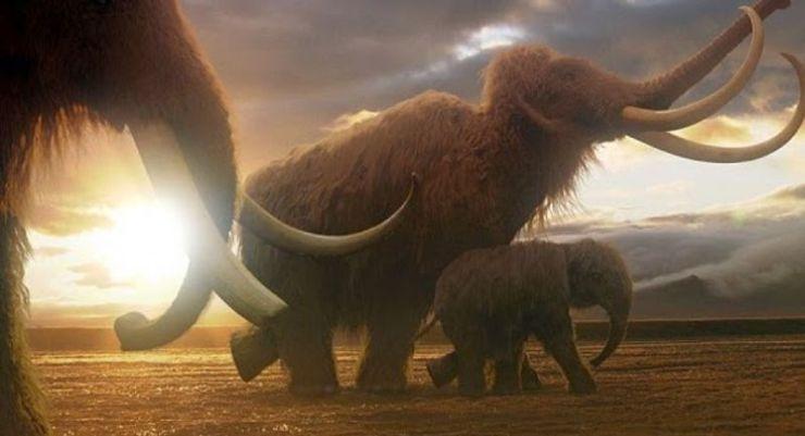 Ενδείξεις για την ύπαρξη προϊστορικών ζώων…
